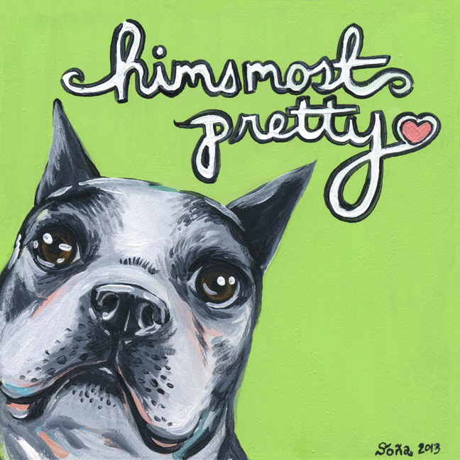 Himsmostpretty Boston Terrier